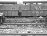 Small 20090209 cp 0178